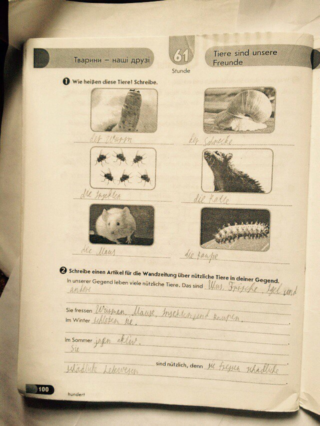 ГДЗ відповіді робочий зошит по немецкому языку 7 класс Світлана Сотникова. Задание: стр. 100