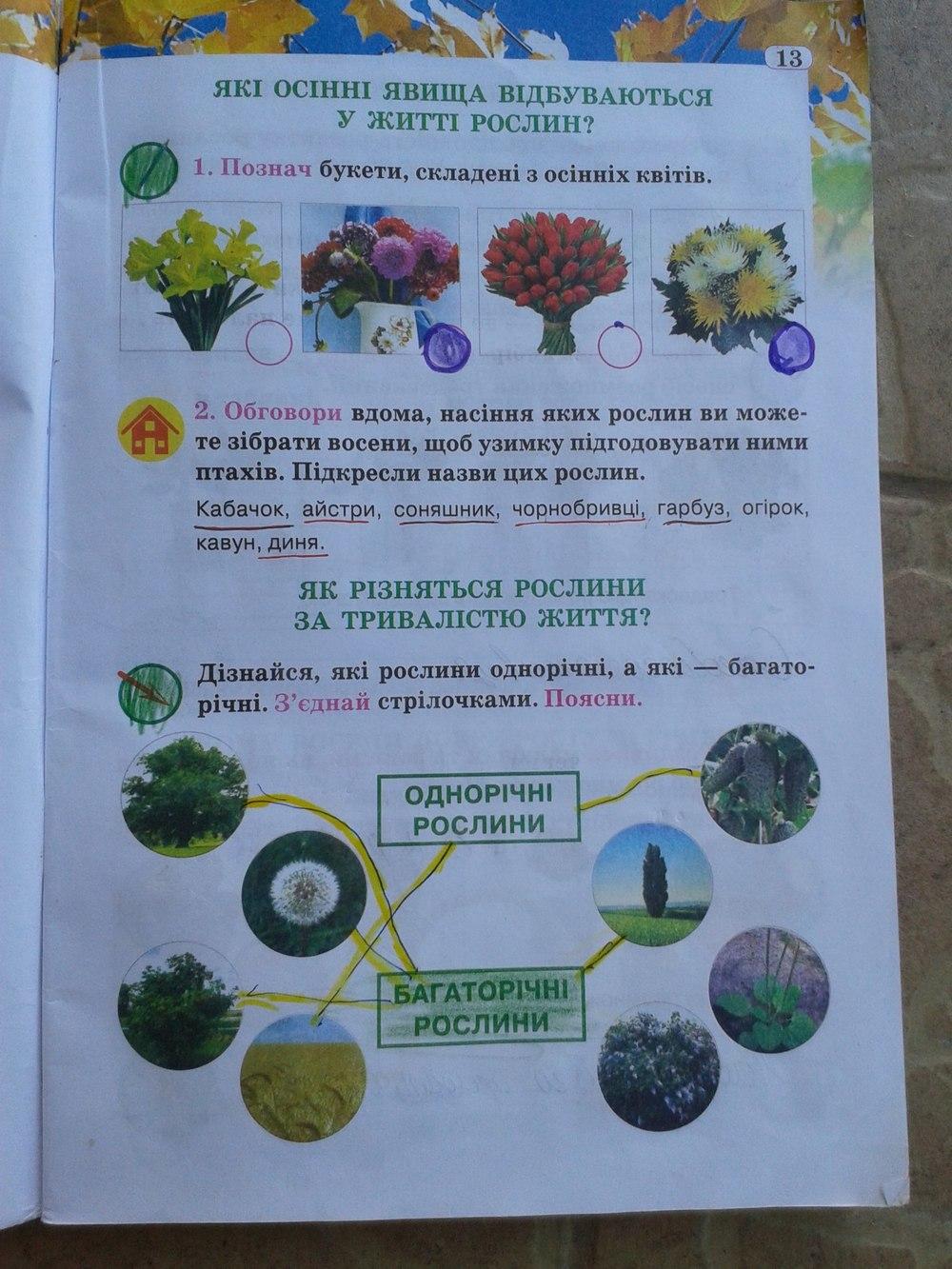 ГДЗ відповіді робочий зошит по биологии 2 класс И. Грущинська. Задание: стр. 13
