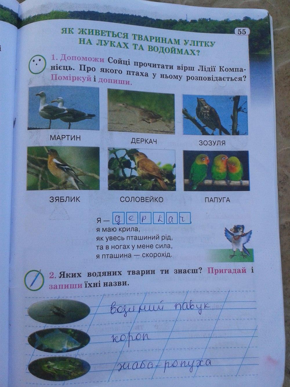 ГДЗ відповіді робочий зошит по биологии 2 класс И. Грущинська. Задание: стр. 55