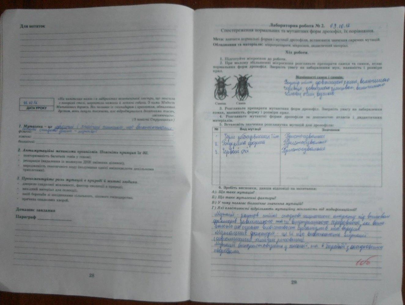 ГДЗ відповіді робочий зошит по биологии 11 класс Є. Яковлева. Задание: стр. 28-29