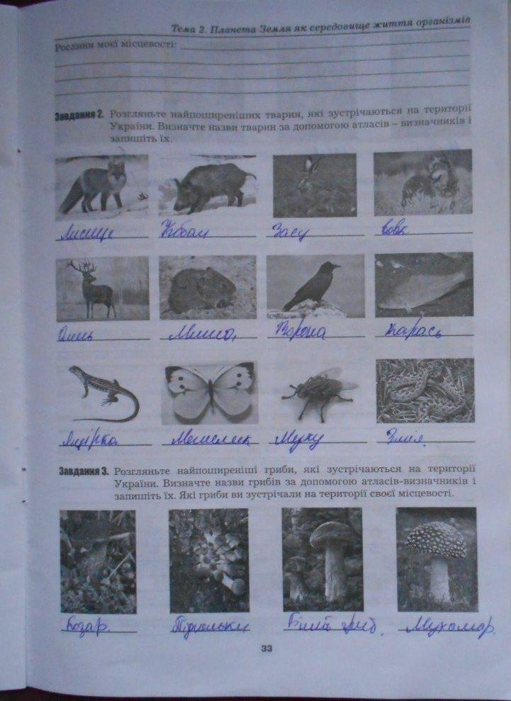 ГДЗ відповіді робочий зошит по биологии 5 класс Бітюк М.Ю., Віркун В.О., Гудзь В.В.. Задание: стр. 33
