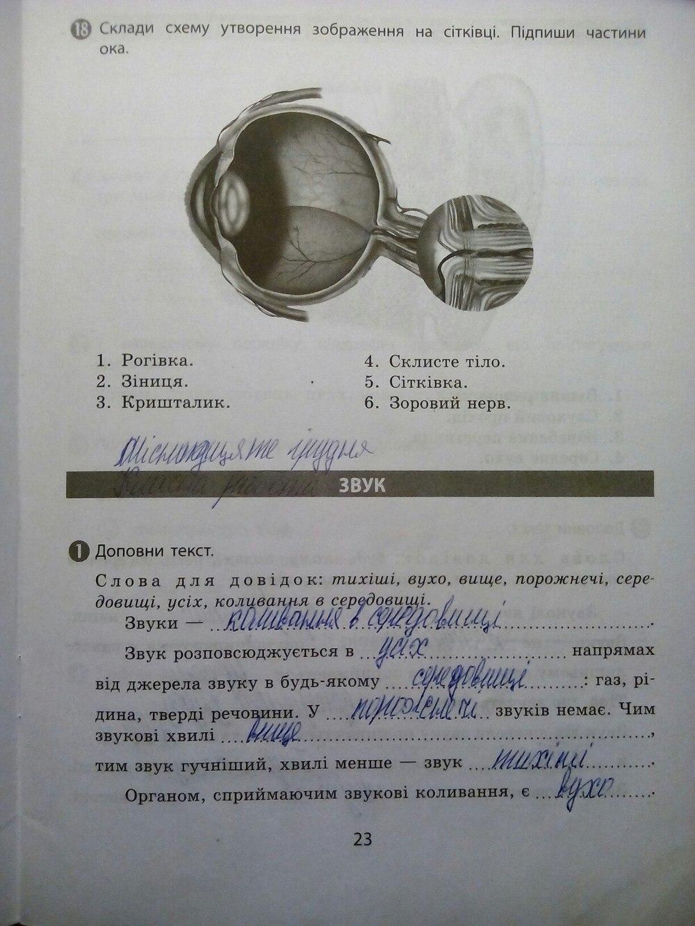 ГДЗ відповіді робочий зошит по биологии 5 класс. Задание: стр. 23