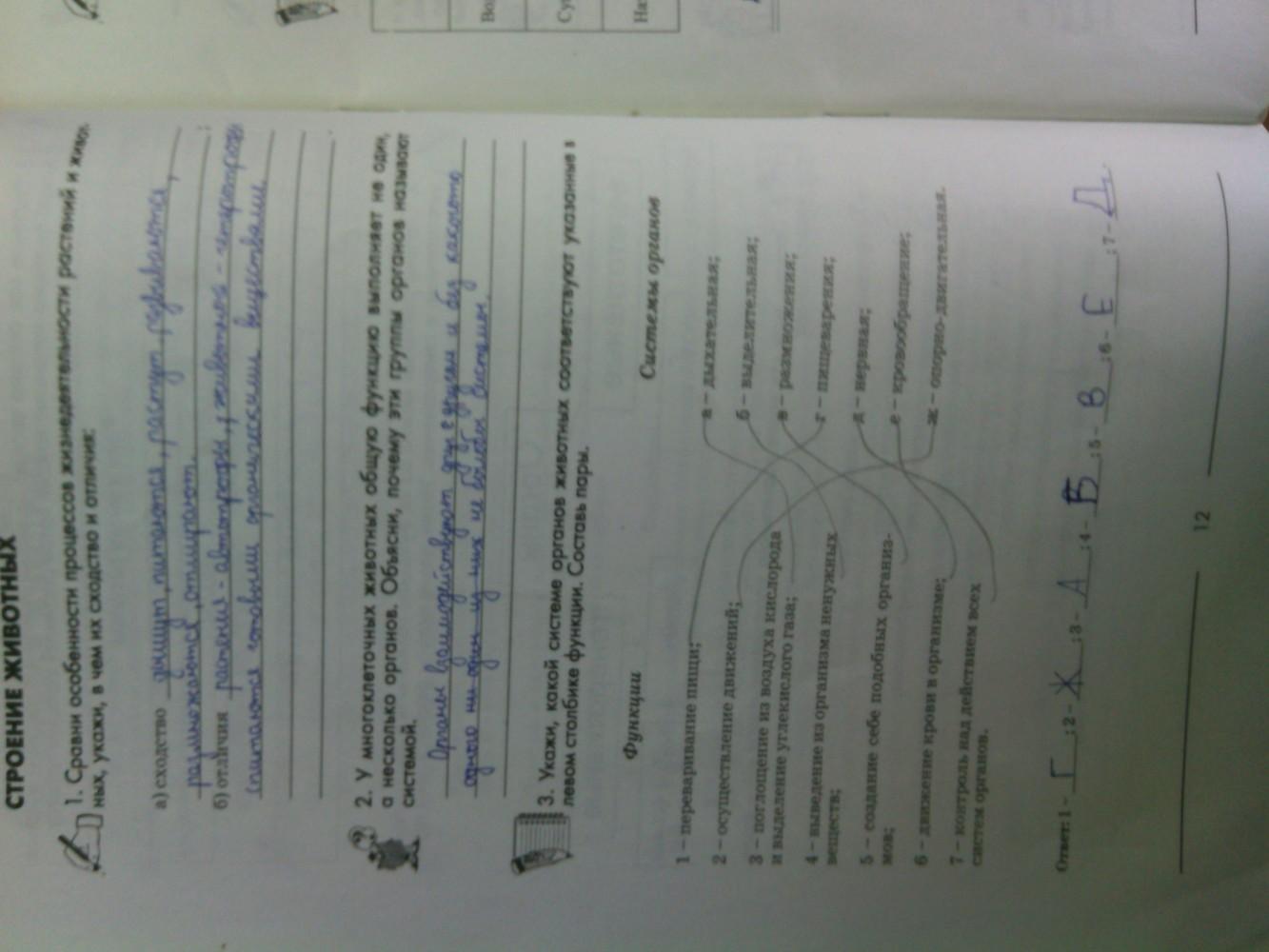 ГДЗ відповіді робочий зошит по биологии 6 класс Котик, Гусева. Задание: стр. 12