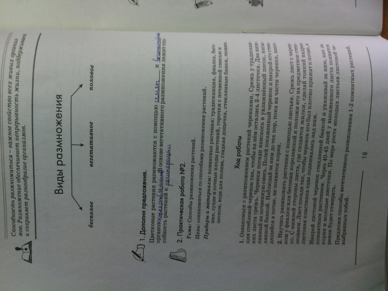 ГДЗ відповіді робочий зошит по биологии 6 класс Котик, Гусева. Задание: стр. 18