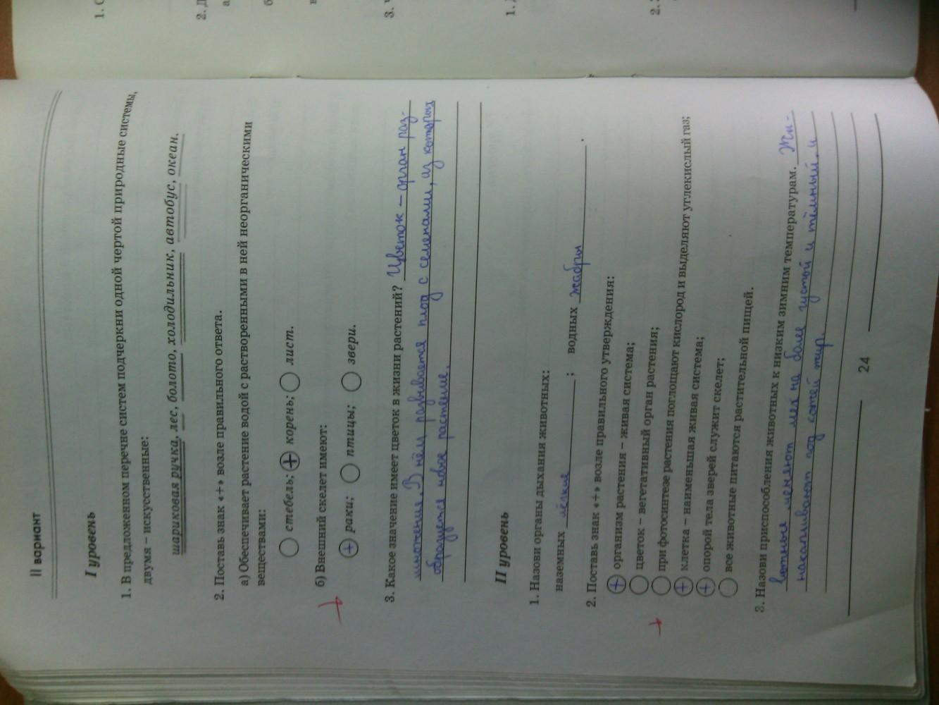 ГДЗ відповіді робочий зошит по биологии 6 класс Котик, Гусева. Задание: стр. 24