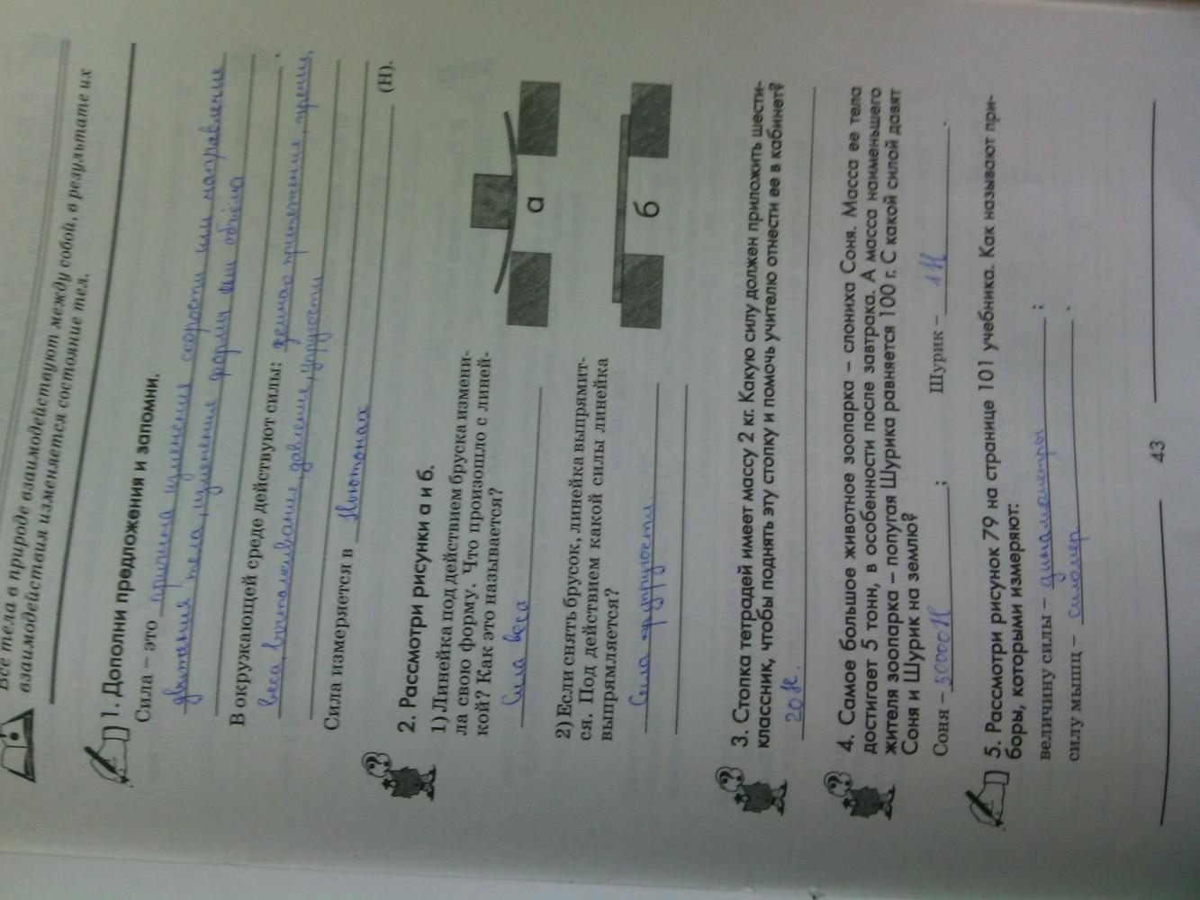ГДЗ відповіді робочий зошит по биологии 6 класс Котик, Гусева. Задание: стр. 43