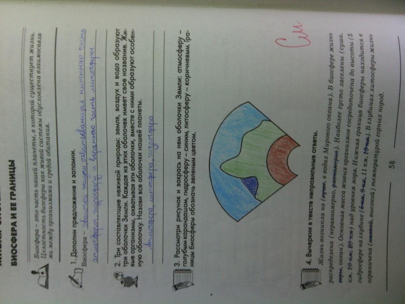 ГДЗ відповіді робочий зошит по биологии 6 класс Котик, Гусева. Задание: стр. 58