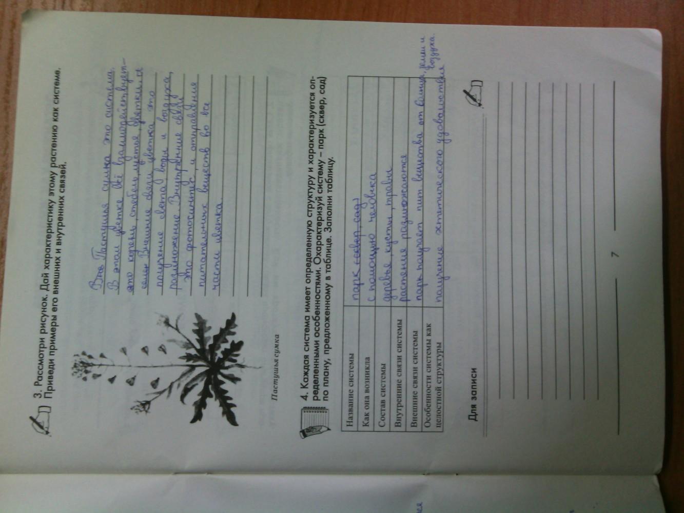 ГДЗ відповіді робочий зошит по биологии 6 класс Котик, Гусева. Задание: стр. 7
