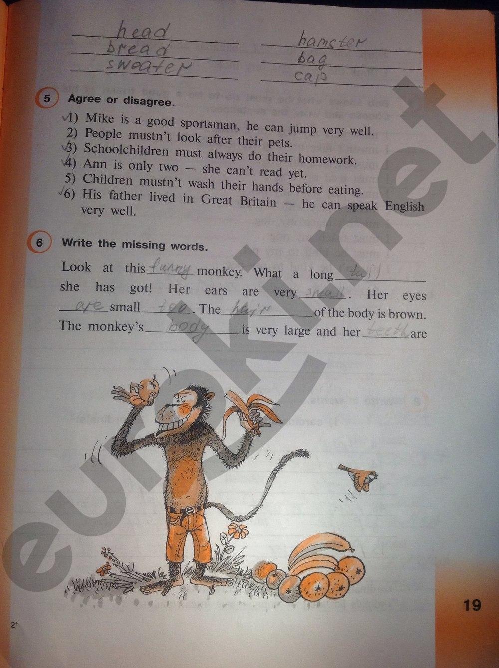 ГДЗ по английскому языку 3 класс рабочая тетрадь Верещагина И.Н. Притыкина Т.А.. Задание: стр. 19