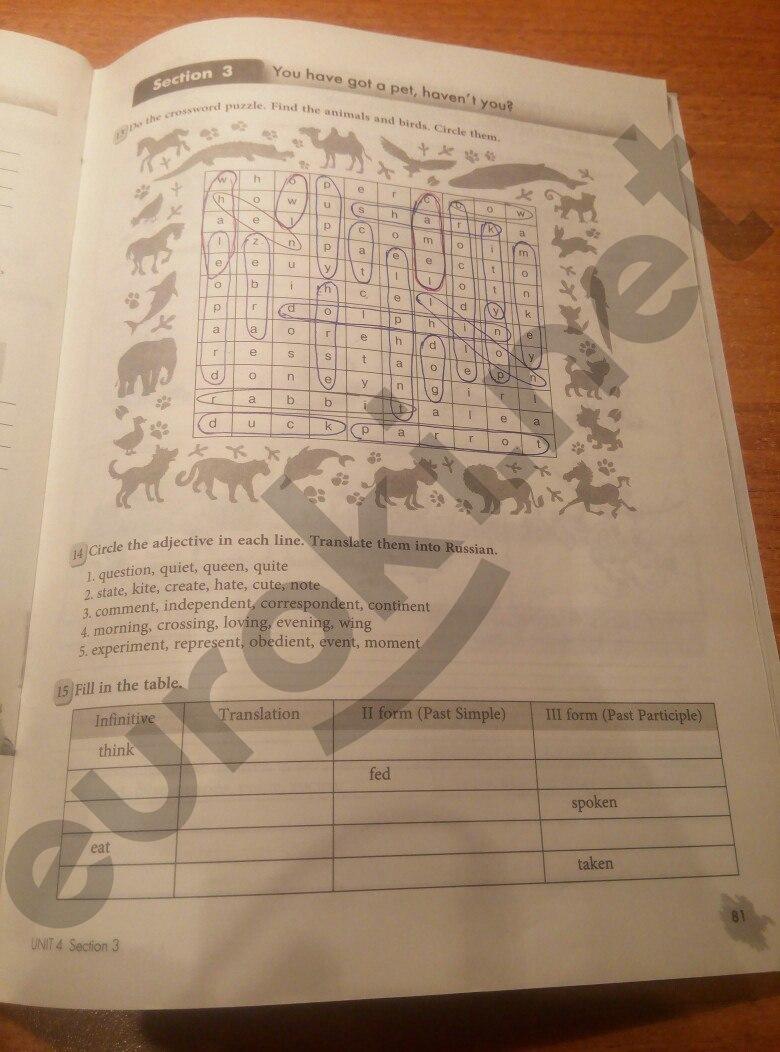 ГДЗ по английскому языку 5 класс рабочая тетрадь Биболетова. Задание: стр. 81